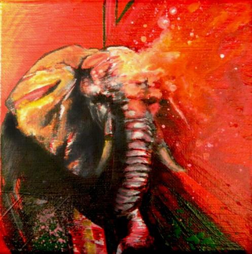 Elephant I!